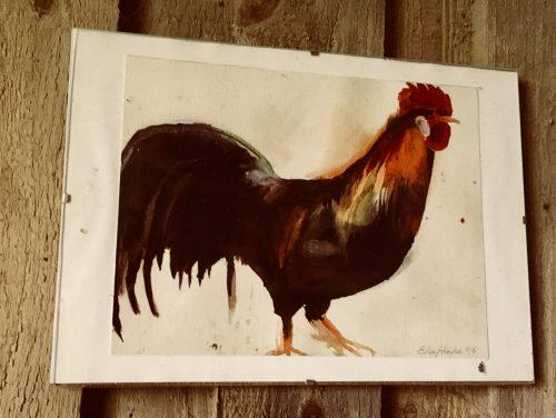 Høns og idolplakater